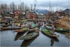 Vegetables - Dal lake